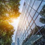 5 Prodotti ecologici per un ufficio sostenibile