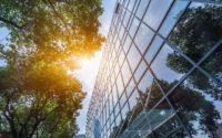 Prodotti consigliati per un ufficio più ecosostenibile