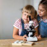 Il microscopio: un'idea regalo intelligente e creativa