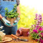Benefici del giardinaggio: 7 motivi per prendersi cura delle piante