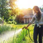 Quando, quanto e come irrigare il giardino e l'orto: tanti consigli utili