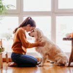 Come capire se il cane ti vuole bene: 8 segnali